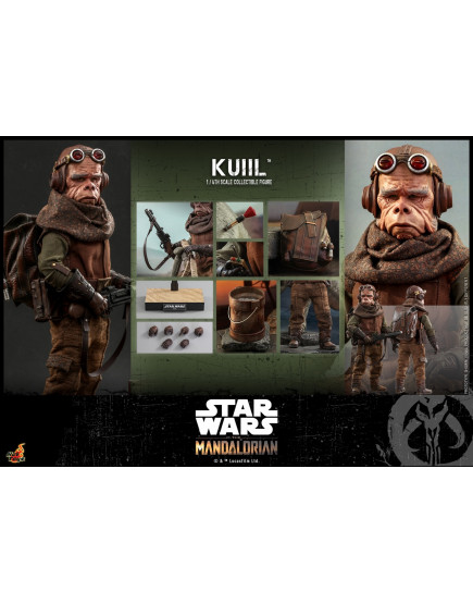 Hot Toys - TMS048 - Star Wars: The MandalorianT - 1/6th scale Kuiil Collectible Figure